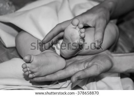baby feet in mother's hands - stock photo
