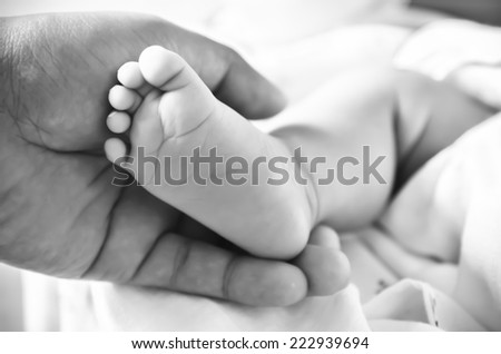 Baby feet newborn into mother's hands. - stock photo