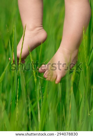 Baby feet over green spring grass