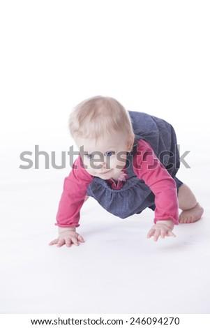 baby girl crawling on white background - stock photo