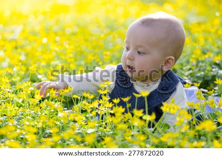 Baby girl on the yellow flower filed - stock photo