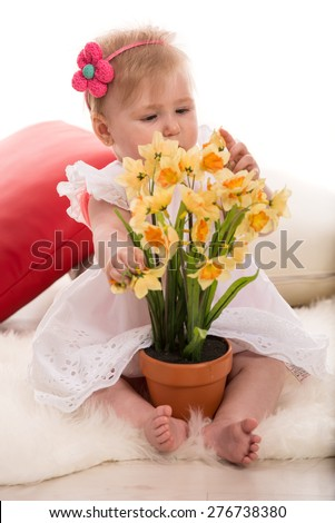 Baby girl sitting on fluffy blanket and studying doffodils flowers in a pot - stock photo