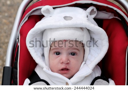 Baby in a carrier - stock photo