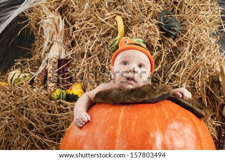 Baby in a pumpkin during Halloween photo shoot in the studio - stock photo
