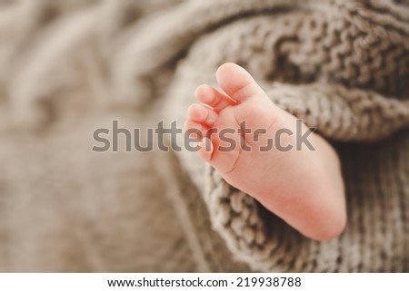 Baby leg. Leg newborn in knitted blanket. Infant feet. Tiny foot. - stock photo