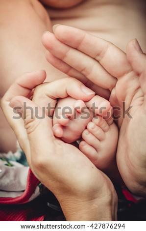 Baby legs. Legs newborn in parents hand - stock photo