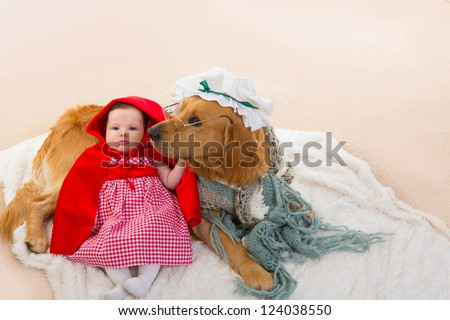 Baby Little Red Riding Hood with wolf dog dressed as grandma golden retriever - stock photo