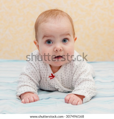 Baby lying on elbows and  tummy and putting the body up. Baby looking straight at the camera. Selective focus on baby head. - stock photo