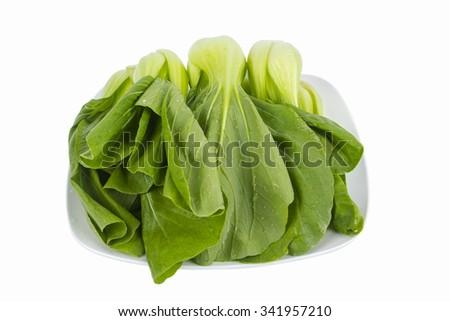 baby mustard leaf on isolated background - stock photo