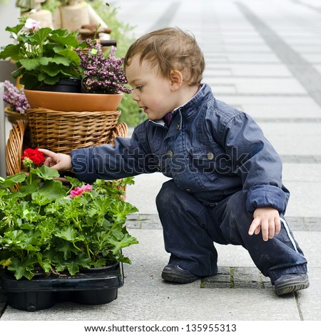 Baby or a small toddler child looking flower in a  flower pot on a patio or street garden.