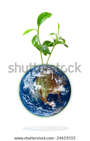 Baby plant growing from the earth over a white background. Data source: nasa. - stock photo