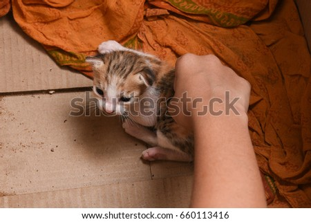 Emo kerala small girls pussy