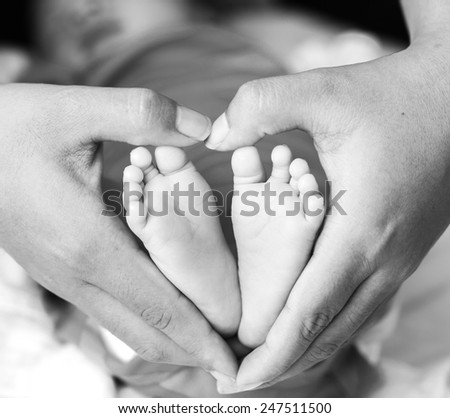 baby`s feet in mother`s hands - stock photo