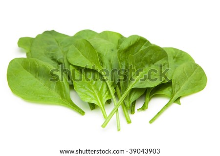 Baby spinach leaves arranged. Isolated on pure white. - stock photo