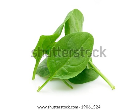 Baby spinach leaves in isolated white background - stock photo