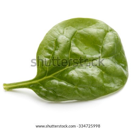 Baby spinach leaves isolated on white background cutout - stock photo