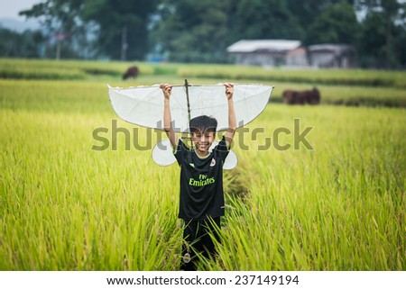 BAC GIANG,VIETNAM-JULY 10: Rural children fly kites in the rice fields. JULY 10,2014 in BAC GIANG, VIETNAM
