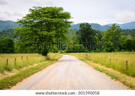 Back Country Road at Great Smoky Mountains National Park - stock photo