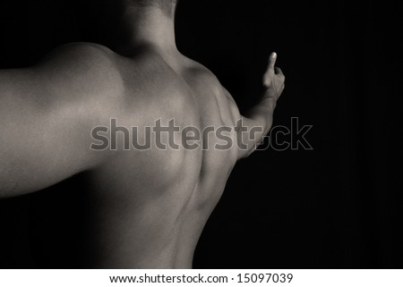 Back of a bodybuilder - stock photo