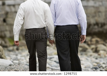 back of gay lovers walking holding hands - stock photo