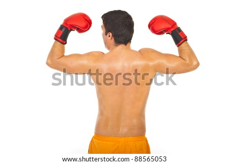 Back of powerful boxer man with arms raised isolated on white background - stock photo
