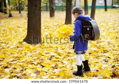 Back to school - adorable brunette girl in blue coat and blue-white school uniform and stylish brown school backpack having fun with yellow maple  leaves in the autumn park