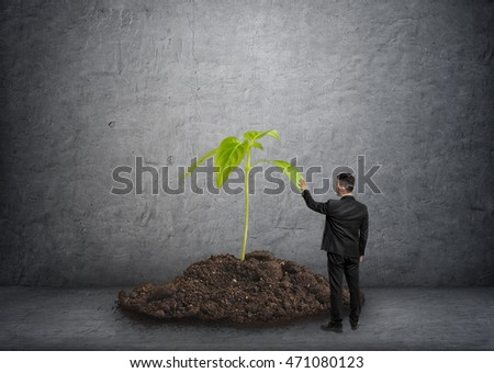 Back view of a businessman touching a big plant in a soil. Environment protection. Ecological impact. Eco-friendly. Organic food.