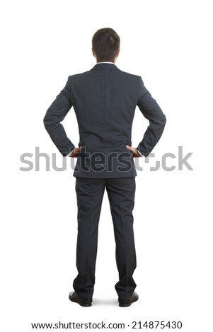 back view of businessman in formal wear over white background - stock photo