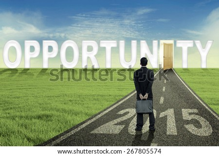 Back view of businessman standing on the opportunity road with an opened door and number 2015 - stock photo