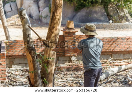 Back view of lumberjack cutting the tree with a sickle - stock photo