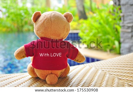 """Back view of teddy bear wearing red T-Shirt with text """"With Love"""" sitting near swimming pool. Concept about love and relationship. - stock photo"""