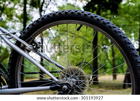 Back wheel of sports mountain bike on nature background