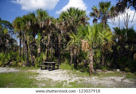 Backcountry campsite in Big Cypress National Preserve, Florida Everglades - stock photo