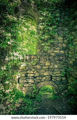 Backdrop image of overgrowth on stone castle wall - stock photo