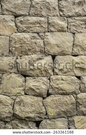 Backdrop of an old and weathered stone wall made of big blocks. This vertical empty surface is perfect as copy space or textured background.  - stock photo