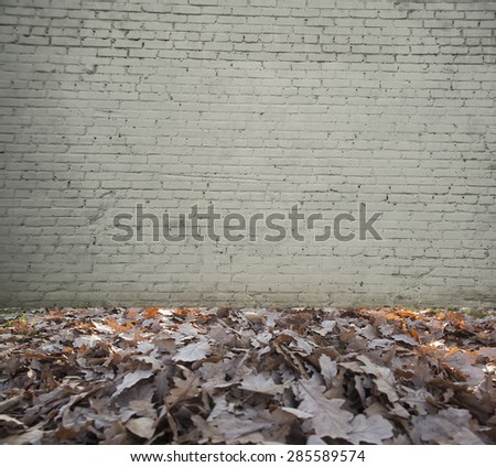 backdrop of High resolution white brick room Bright room with autumn fallen leaves on floor and gray wall background - stock photo