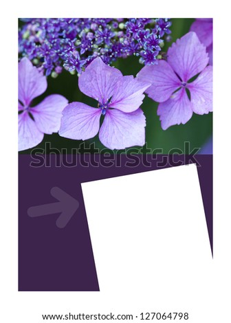 Background and layout for gardening theme - stock photo