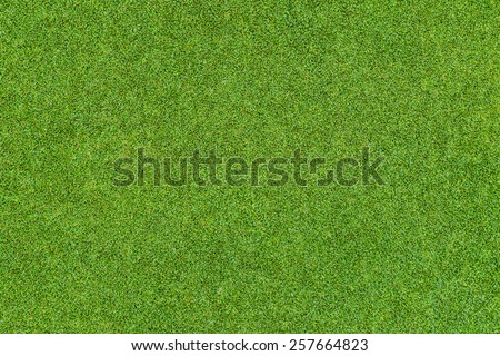 Grass Wall Stock Images Royalty Free Images Amp Vectors