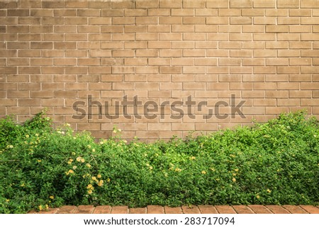 background and texture of vintage style decorative brown brick wall with Lantana camara or Cloth of gold - stock photo