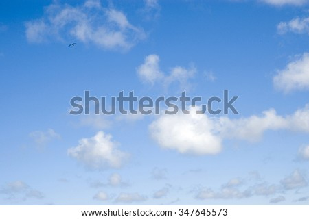 Background. Beautiful  cumulus clouds in the  blue sky