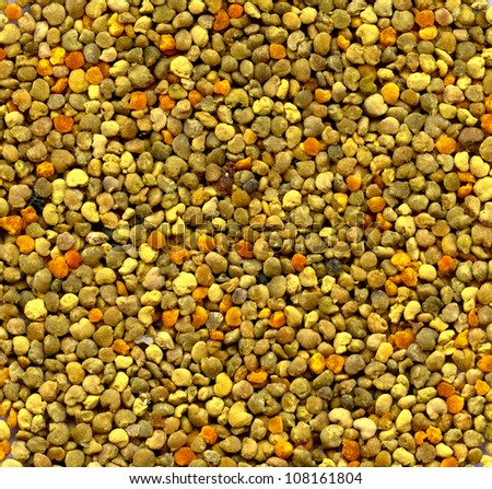 background: bee gathered pollen granules - stock photo