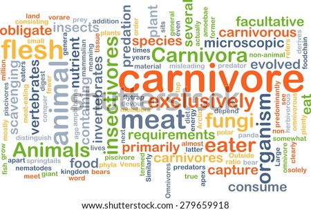 Background concept wordcloud illustration of carnivore