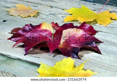 Background from autumn leaves on a wooden table