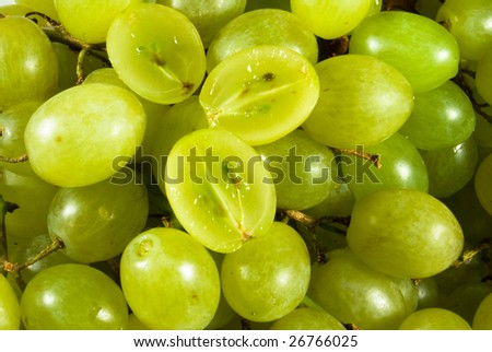 Background from large juicy green berry grape