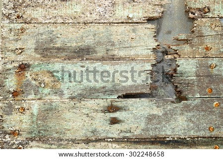 background from the bark of a tree overgrown with barnacles