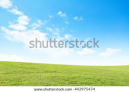 Background green grass and blue sky - stock photo