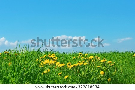 Background green grass and blue sky with clouds - stock photo