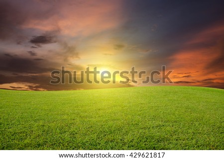 Background green grass on blurred sky-clouds and sunlight