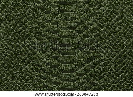 background - green reptile skin texture - Crocodile - snake - stock photo
