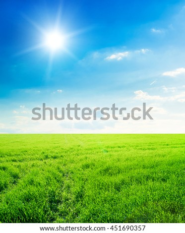 Background image of lush grass field under blue sky
